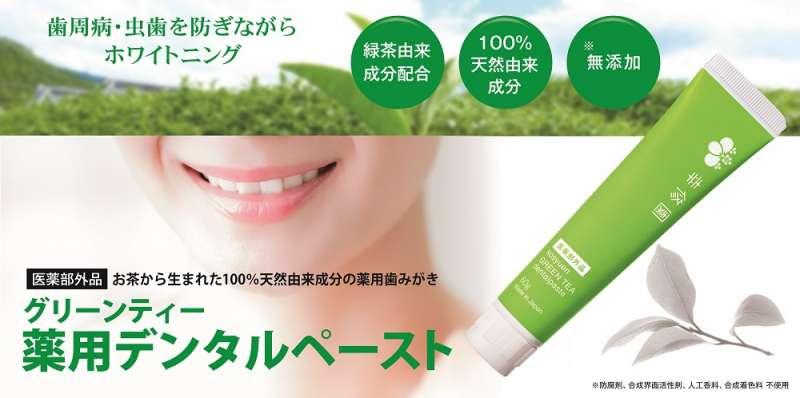 歯周病虫歯予防の薬用歯みがきグリーンティー薬用デンタルペーストが新発売